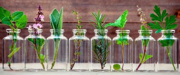 Earth medicine: aromatherapy