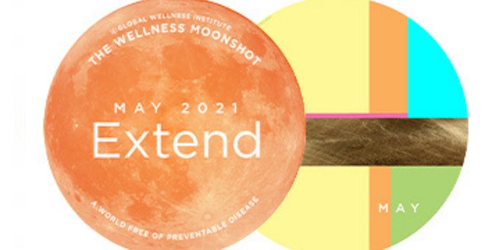 GWI Wellness Moonshot Extend