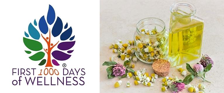 First 1000 days of wellness