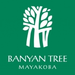 Banyan tree mayakoba