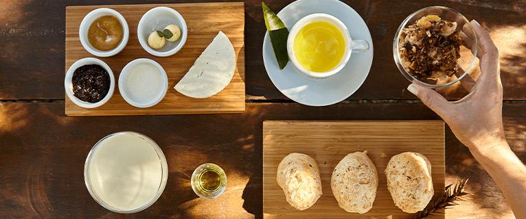 wellness gastronomy lapinha