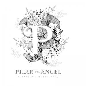 Pilar del Ángel